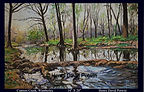 Cypress Creek Wimberly Texas