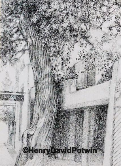 "Gallery Tree - 2016 10X14"""