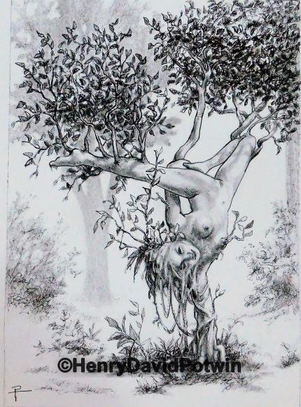 Tree Asana#2