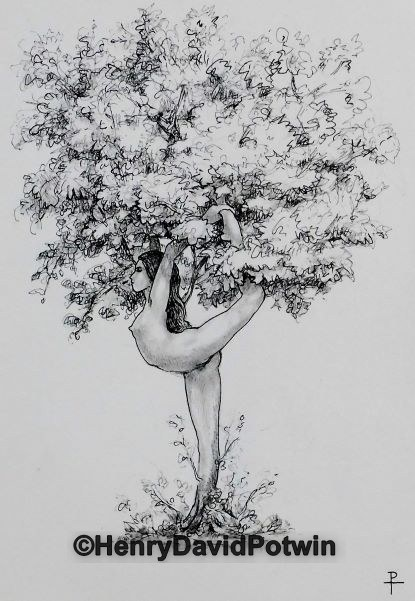 """Yoga Tree Study #3 - 2017 10X14"""""""