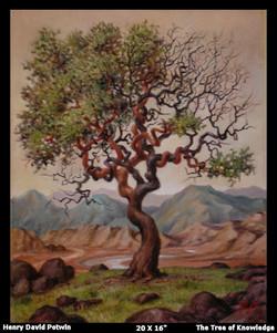 2005 Tree Of Knowledge