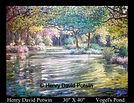 Vogel's Pond