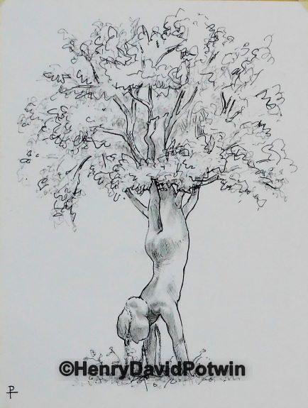 """Yoga Tree Study #1 - 2017 12X9"""""""