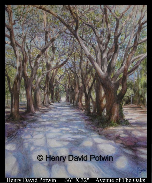 """Avenue of the Oaks St. Helena Island  - 2007 36X32"""""""