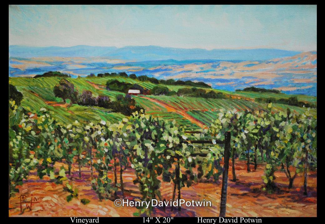 """Vineyard  - 2010 14X20"""""""