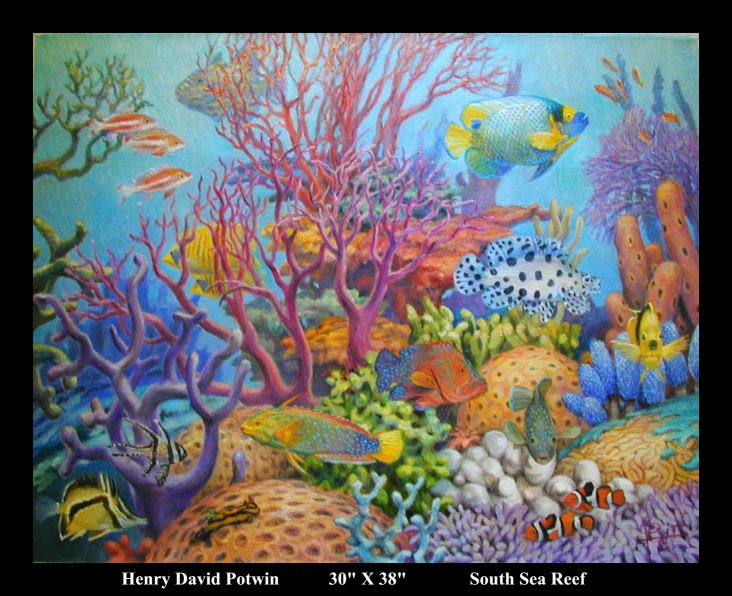 South Sea Reef 30X38