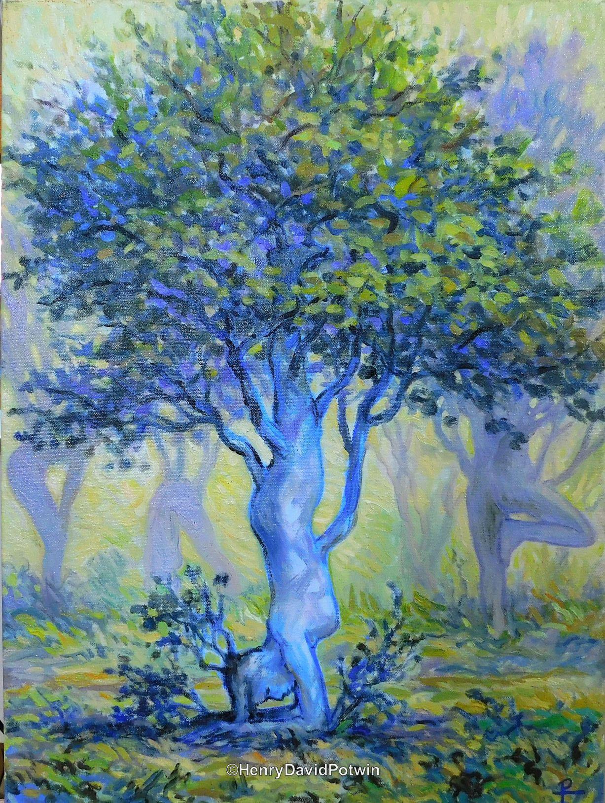"Pincha Murasana tree - 2017 22X16"""