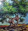 Asana Tree