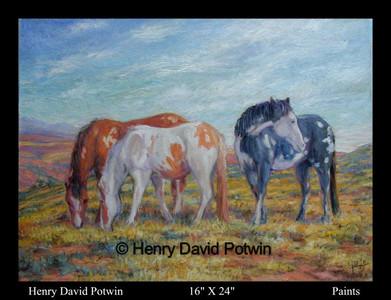 """Paints  - 2000-2001 16X24"""""""