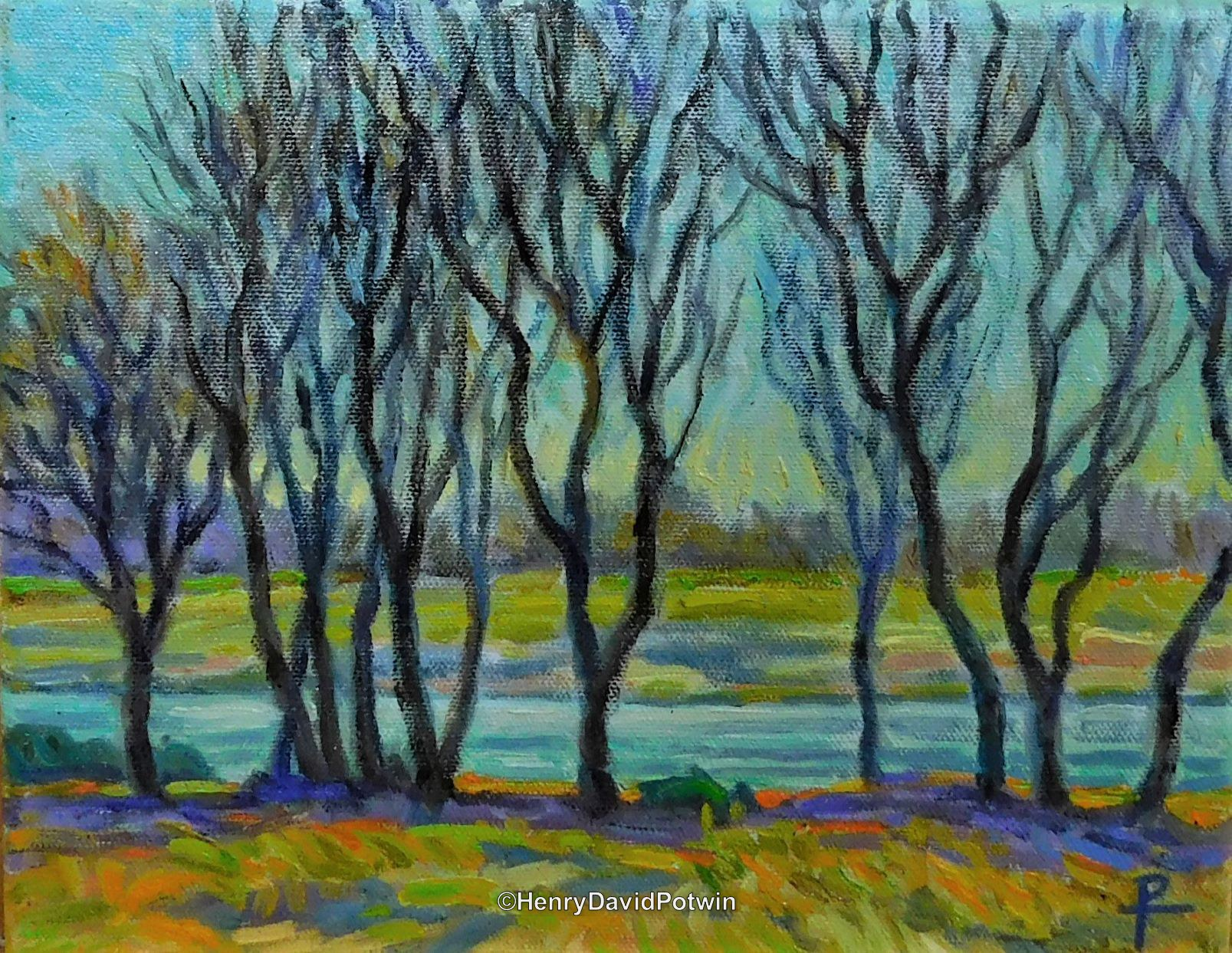 Trees On The Bank