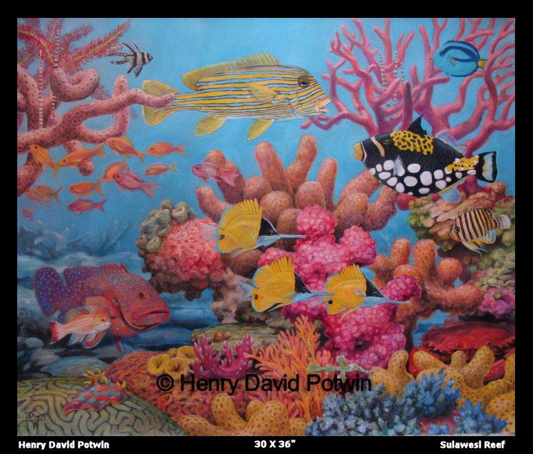 """Sulawesi Reef  - 2007 30X36"""""""