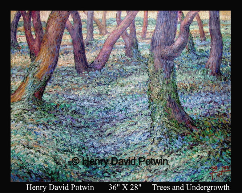 Trees and Undergrowth  - 1990's 36X28""