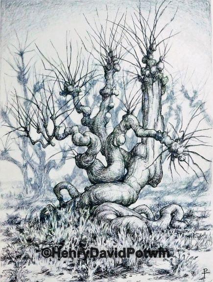 """Trees Grotesque - 2016 11X15"""""""