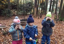 Waldmusik