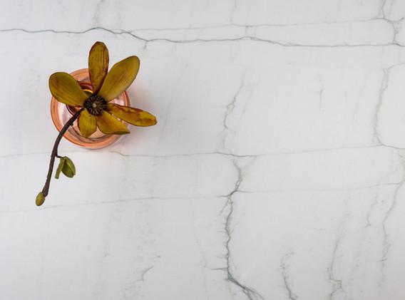 neolith-mont-blanc-detalle-1024x683.jpg