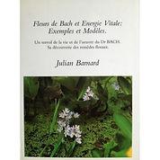 fleurs-de-bach-energie-vitale-exemples-m
