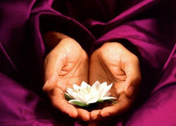 mains lotus