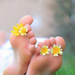 pied fleuri