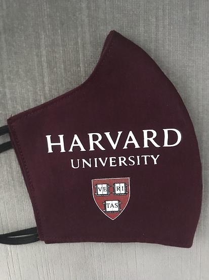 Custom University Mask ($13 - $15)