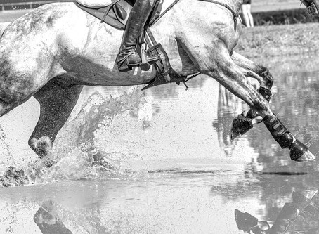 Eventing: 'National Safety Officer'
