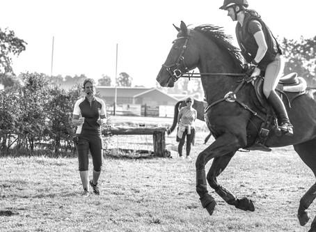 #SundaySchool: Hoe maak je een fitnessplan voor je paard?