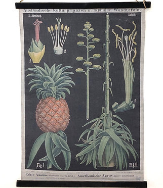 Botanical Wall Scroll Decor