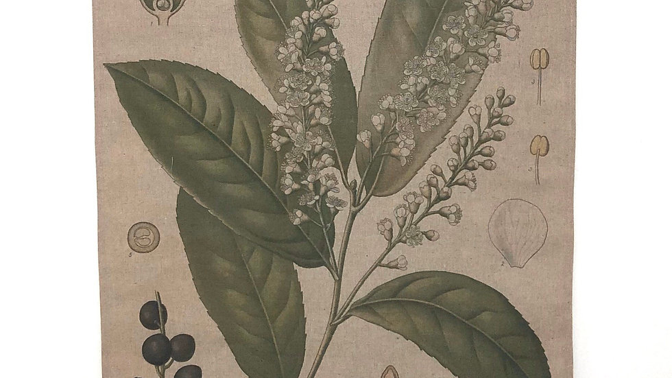 Linen Wall Decor Botanical Prunus
