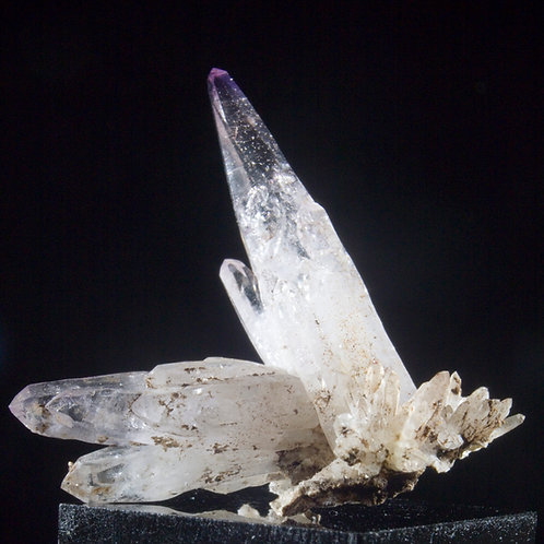 Scepters of Amethyst of every scale make this miniature a compelling exploration. The tallest crystal terminates perfectly