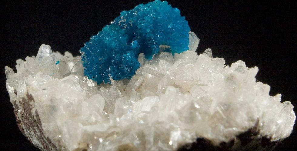Brilliantly Blue Cavansite Twin on Miniature White Heulandite Crystals