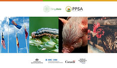 Biosecurity Threats in Agriculture webinar series