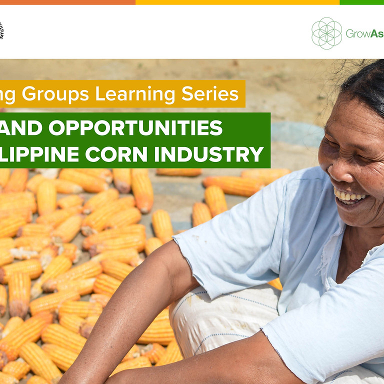 Outlook and Opportunities in the Philippine Corn Industry