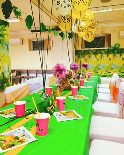 Jungle party package