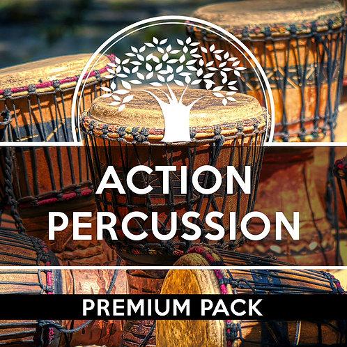 Drums Percussion Beats Premium Pack