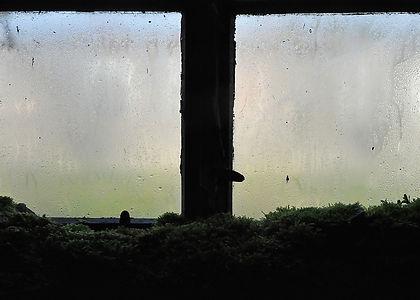 Fenster1.jpg