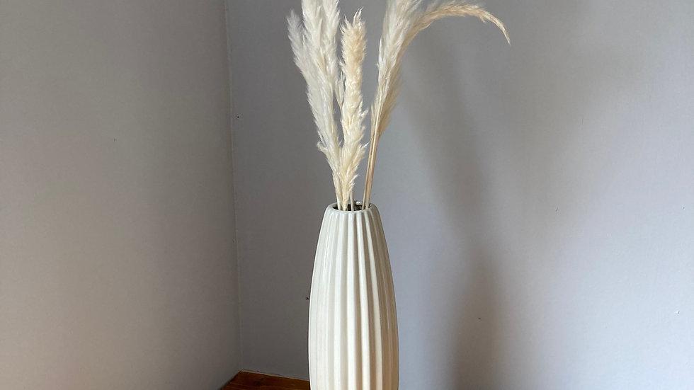 Mini Pampas Grass (10 stems)