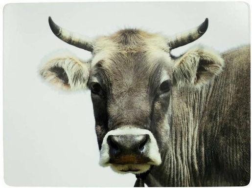 Platzset Kuh, 4er Set