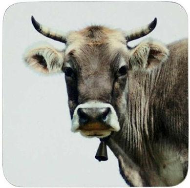 Untersetzer Kuh, 6er Set