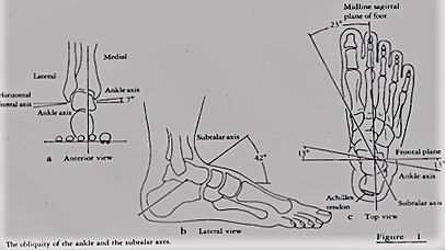 AJ & STJ Diagram (2).png