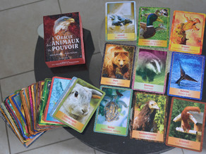 """Jeu de cartes """"Les animaux de pouvoir"""""""