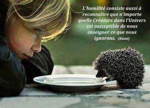 Ouvrir son coeur et se laisser enseigner...