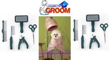 Pet+Grooming+Academy.jpg