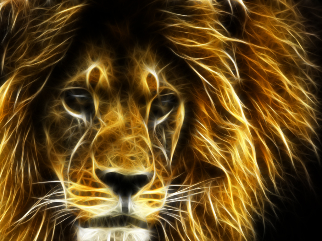 another lion Wallpaper__yvt2.jpg
