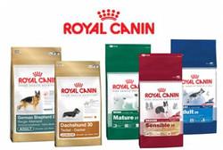 heavy-discount-Dog-Food-Wholesale-In-Delhi-N-C-R-20120824163157.jpg
