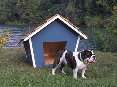 dog_houses.jpg