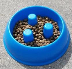 Dog Food Bowl.jpg