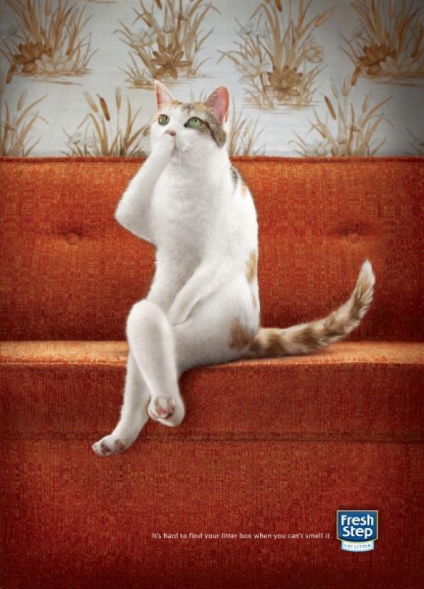 fresh-step-cat-litter-chelsea-small-46684.jpg