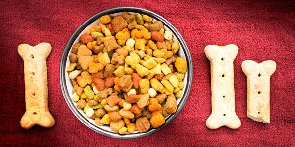 dog-food-bowl-bone.jpg