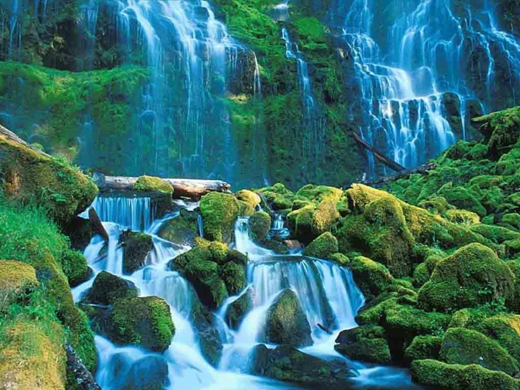 lake-nature-serene-beauty-31000 copy.jpeg