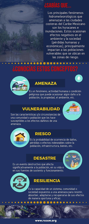 Infografía_Conceptos.png