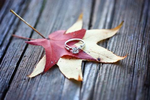 Rings Fall